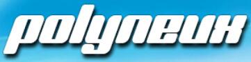 Polyneux-Logo 2017